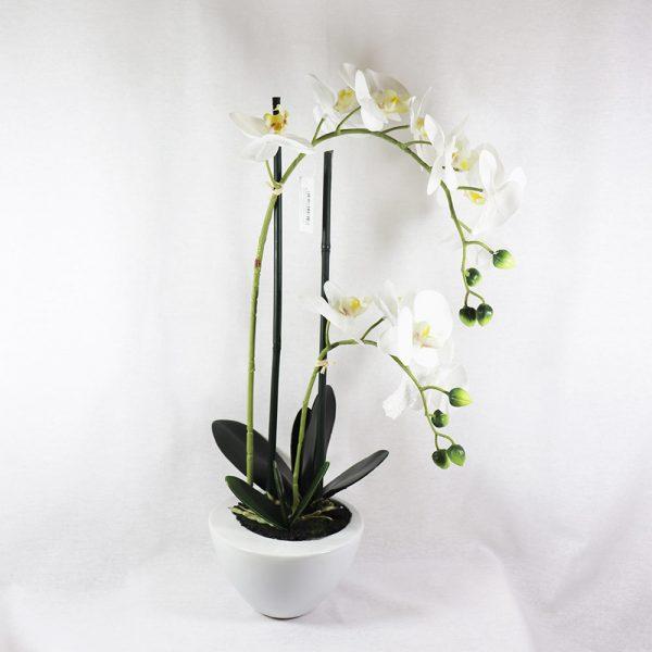 Orquídea com Vaso