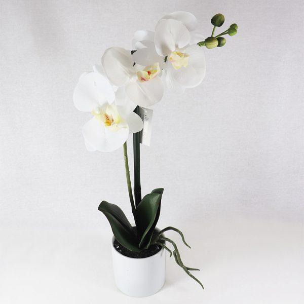 Vaso c/ Orquídea