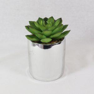 Cacto em vaso | Homeart - Design e Decoração de Interiores | 18000419