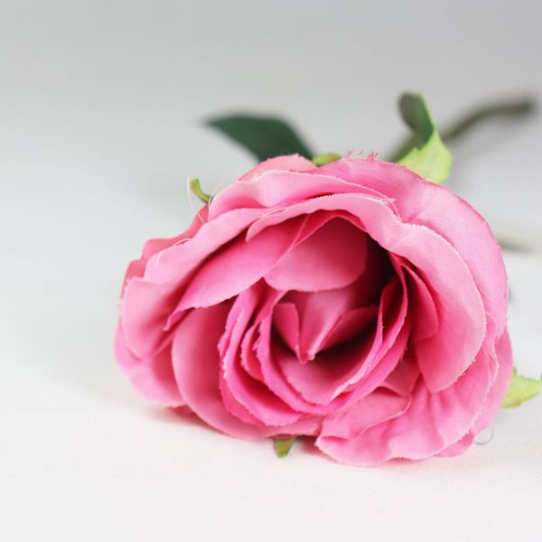 Pé Rosa Pequeno