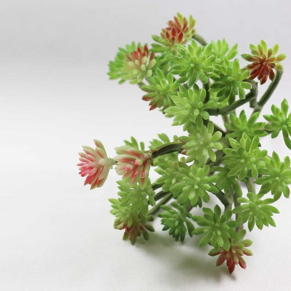Ramo Suculento Artificial Bucho Verde