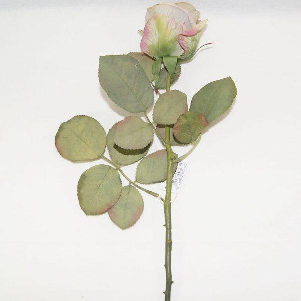 Rosa Art Deco Verde