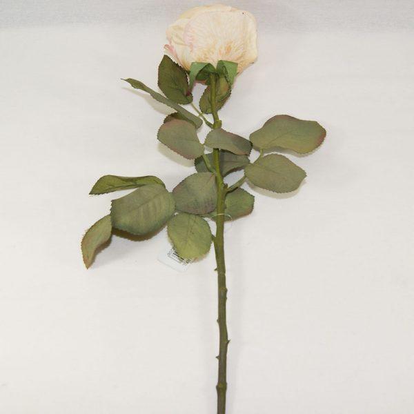Rosa Art Deco Bege